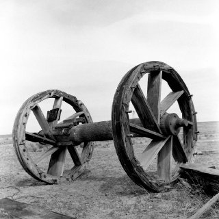 Bull Wheel on The Plains.jpg
